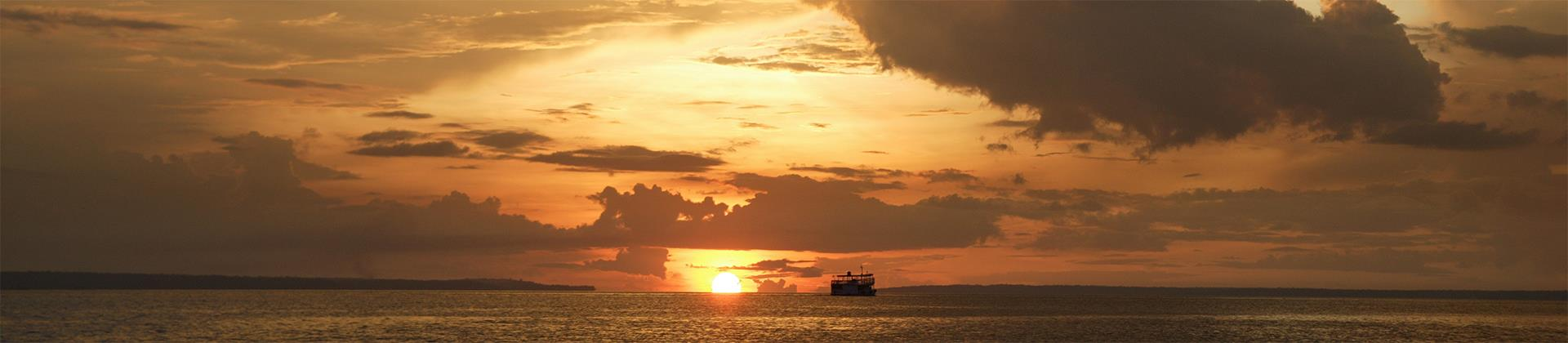 Marine Brasil