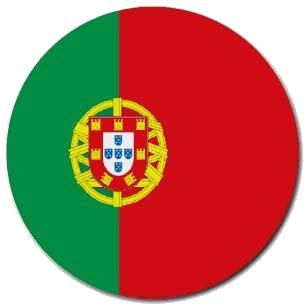 Pt-flag-cir