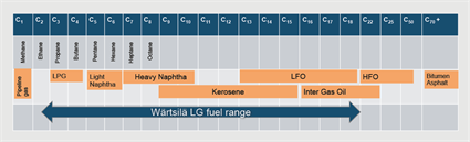 LPG – Taking fuel flexibility to the next level5