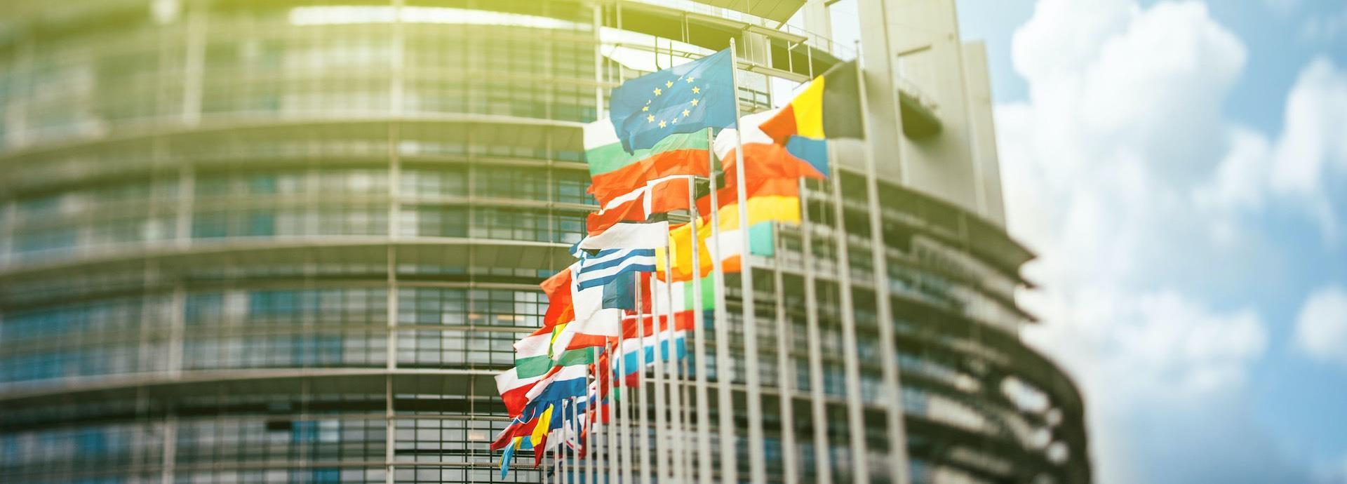 EU flags in Strasbourg