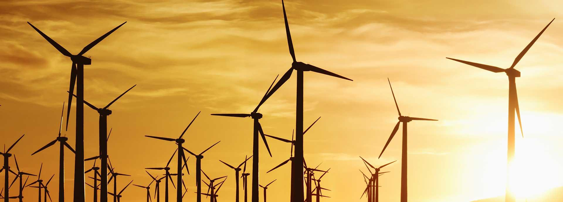 Renewable Energy gathers pace in the U.S.