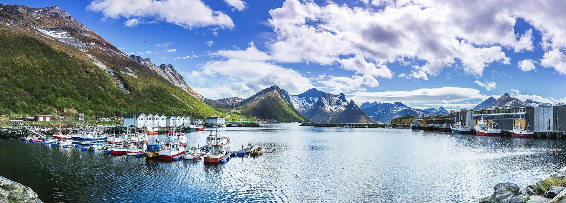 Wärtsilä working to raise efficiencies, lower operational costs, and reduce the environmental impact for fishing industry vessels