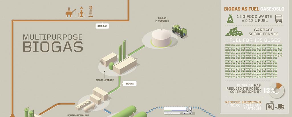 Multipurpose biogas